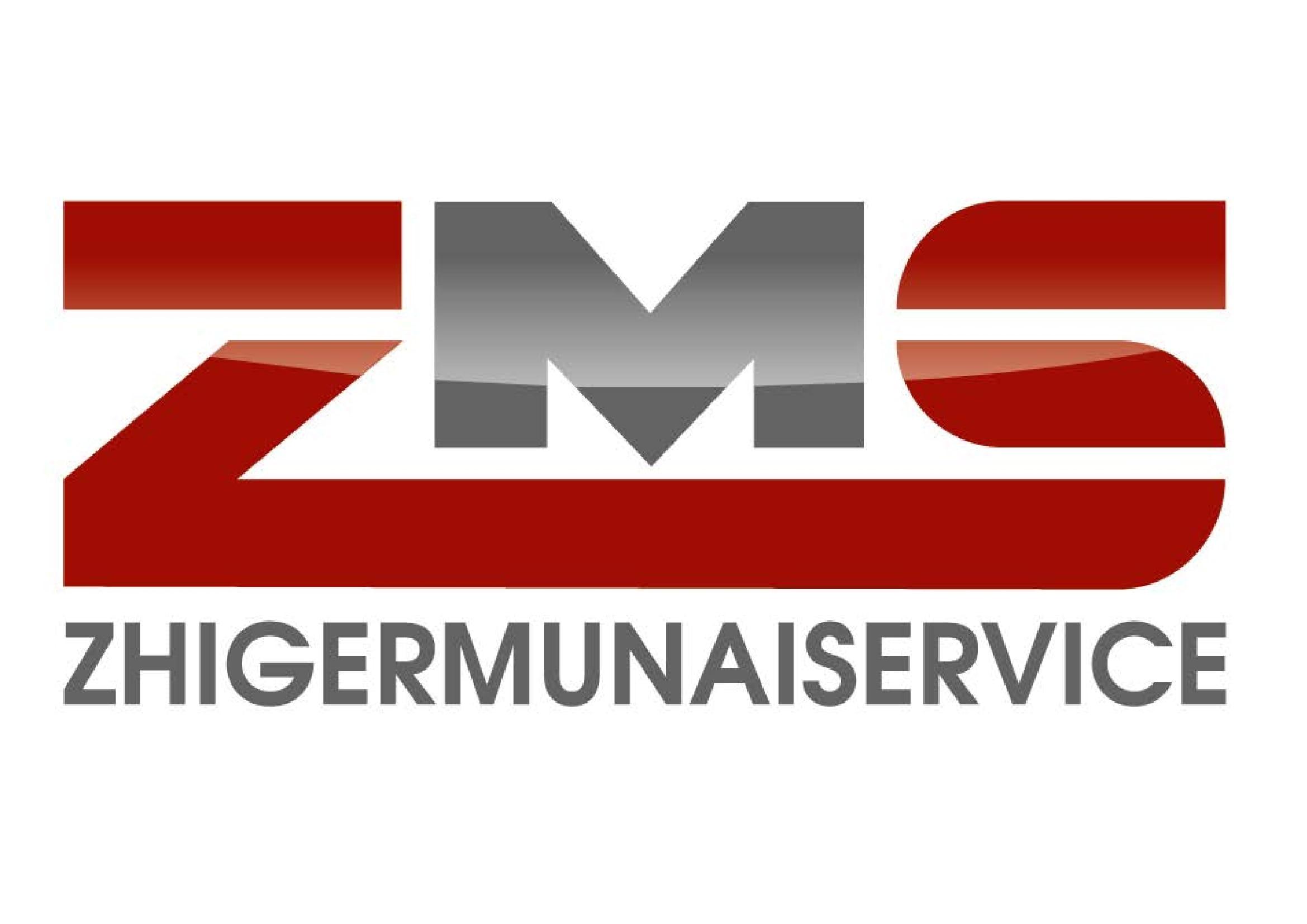 ZhigerMunaiService